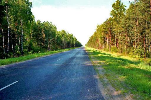 endlos zog sich die schnurgerade Strasse durch weite Moorgebiete