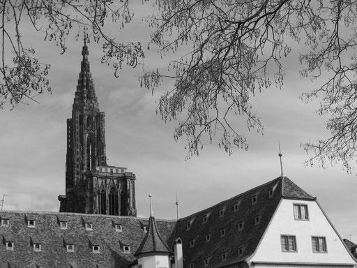 das Münster von Strassbourg mit nur einem Turm