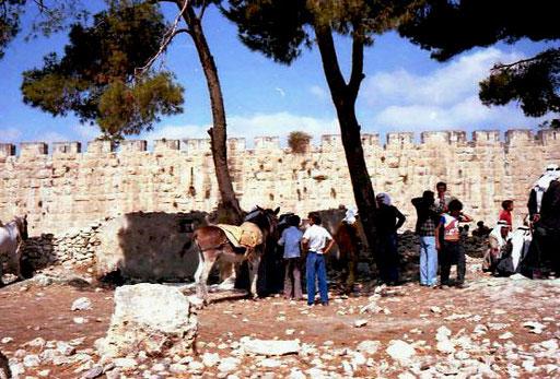 Schafmarkt vor der historischen Stadtmauer von Jerusalem