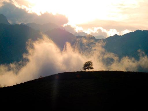 am späten Nachmittag zogen hurtige Nebelschwaden in das Hochtal