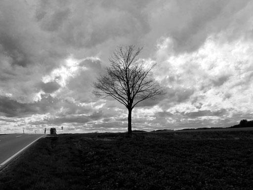die Schwäbische Alb, eine Landschaft mit vielen Gesichtern