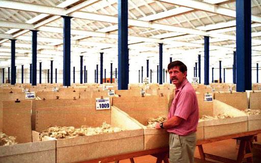 1.278 verschiedene Woll-Qualitäten in der Wool-Auktionshalle