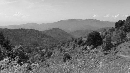 die Berge der Vogesen setzten uns ganz schön zu