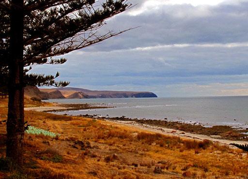 vor mir der indische Ozean vor Kangaroo Island