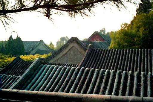 weich und aufwändig gestaltet die Dächer der einzelnen Gebäuden