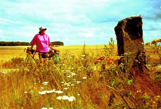 am Rande eines unendlich weiten Kornfeldes