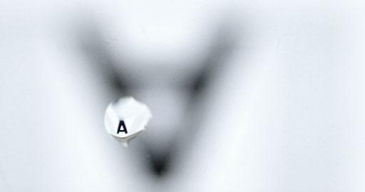 Tobias Willa; Basel; Illustration; Fotografie; Typografie; Wasser; Linse; Kamera; Aleph; Geburtsstunde der Typo; Font; Letter; Tropfen; Kunsttheorie; Spiegelung; Optik; Physik