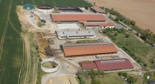 Agrargenossenschaft e.G. Nebra