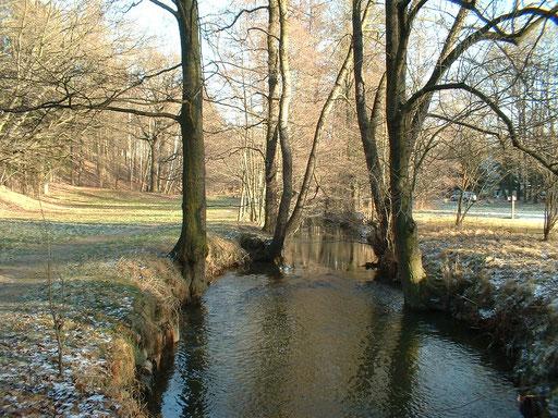 Bild: Teichler Seeligstadt Sachsen Röder im Hüttertal bei Radeberg