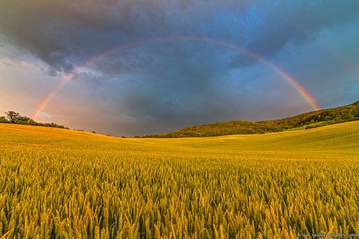 Regenbogen in Kunitz / Jena