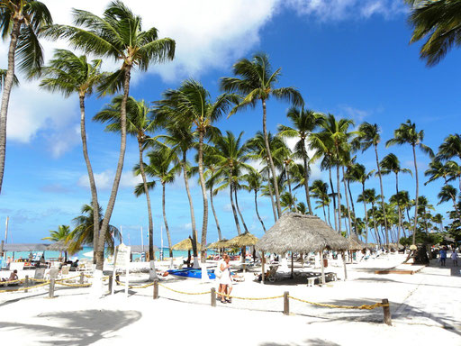 Aruba: Palm Beach