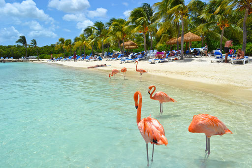 Aruba: Sonesta/Renaissance Island