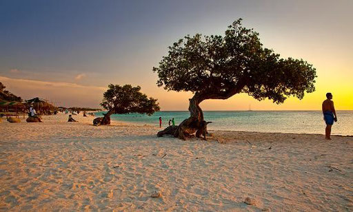 Aruba: Eagle Beach