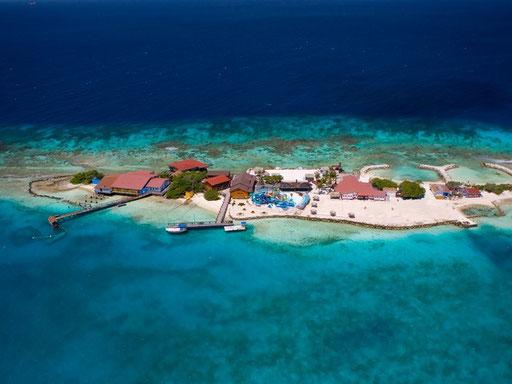 Aruba: De Palm Island