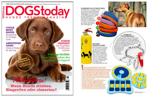 KingLuy DOGStoday 03/2014