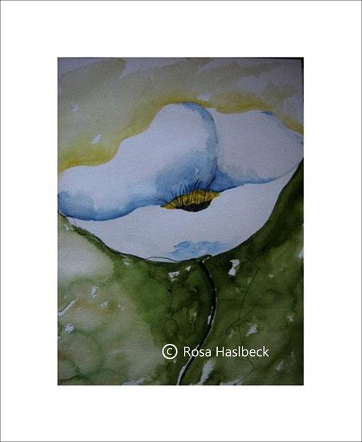 aquarell. blumenaquarell weißer Mohn, mohnblumen, blumen, sommer, weiß, grün, kaufen, kunst, bild
