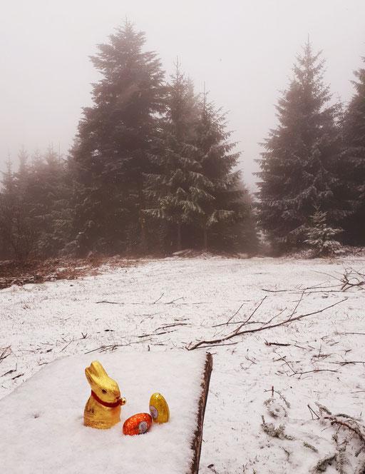 ...aus dem Schwarzwald!