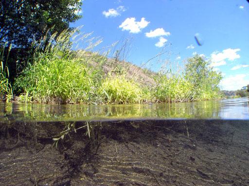 Sundhäuser See, Einstieg Oasis