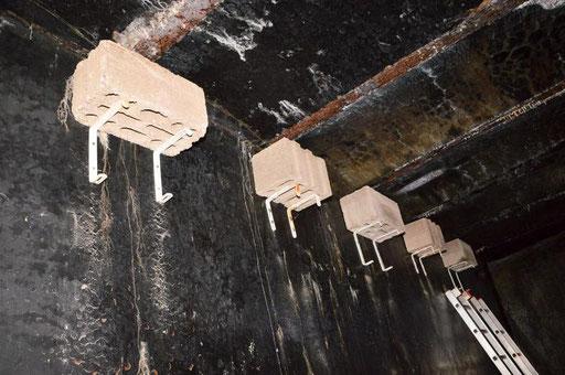 In die Hohlblocksteine in der alten Wasserkammer können sich Fledermäuse zum Schlafen hinein hängen. Foto: Ina Tannert