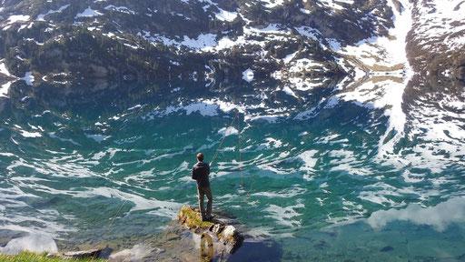 Unsere Bergseen wie hier der Engstlensee; ein Traum!