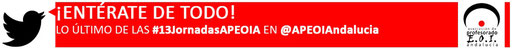 13Jornadas_twitter