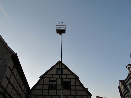 Raststätte. Sehet die Vögel. Stadtgalerie Havelberg 2011