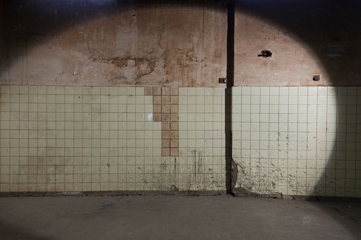 Bild:An der Fliesenwand fehlende Fliesen sind durch Brotfliesen ersetzt worden