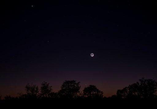 新月前の地球照(オーストラリア)夜明け前  うさぎがわかりますか