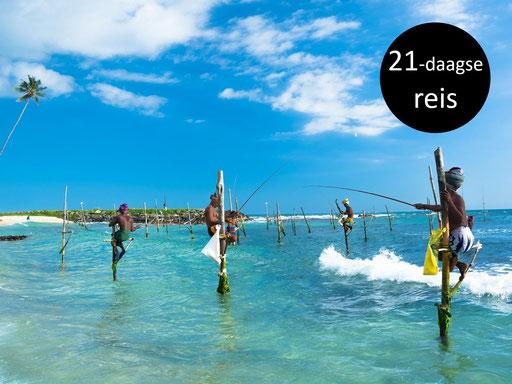 Paalvissers in zuid Sri Lanka