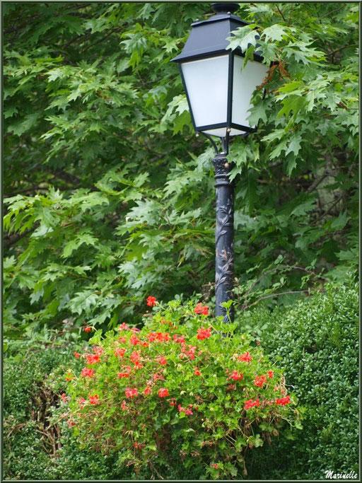 Lampadaire fleuri au village d'Aas, Vallée d'Ossau (64)