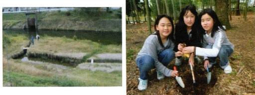 小畑川ビオトープ(左) 竹の子掘り体験(右)