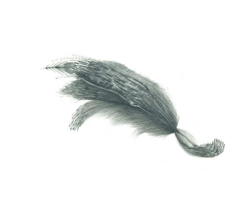 Graphit auf Papier, München 2016, 42 x 29,7 cm