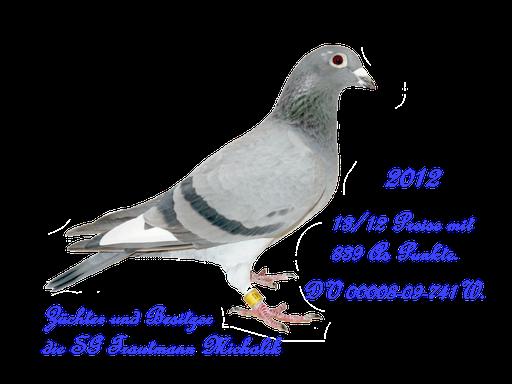50% Blut Führung Stammvogel DV 2099
