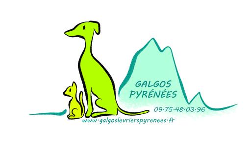 galgolevrierspyrenees.fr