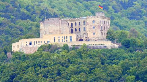 Im Wald rund um das neugotische Hambacher Schloss wachsen viele (Edel-)Kastanienbäume. Foto: wikipedia