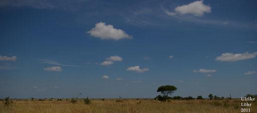 der Himmel über Afrika...