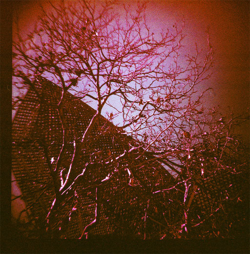 Barcelona 1 & purple film