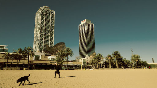 winter beach in Barcelona 1