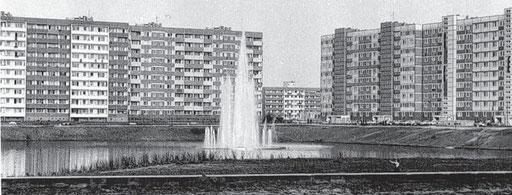 Eine Aufnahme aus besseren Zeiten: Die Fontäne im Neustädter See kann nach Ansicht der Stadt nicht mehr sprudeln. Archivfoto: Kubern