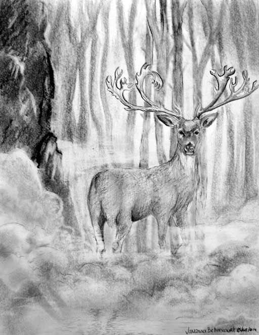 deer traditional art drawing pencil moose forest myth