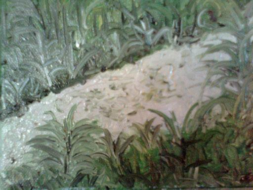 UN RIVO - 2011 olio su tela 13 x 18