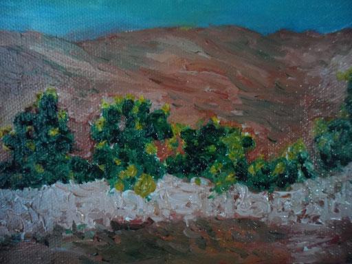 LE COLLINE DEI FICHI D'INDIA - 2011 olio su tela 13 x 18