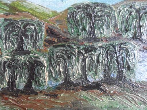 IL FIUME E I SALICI - 2011 olio su tela 13 x 18