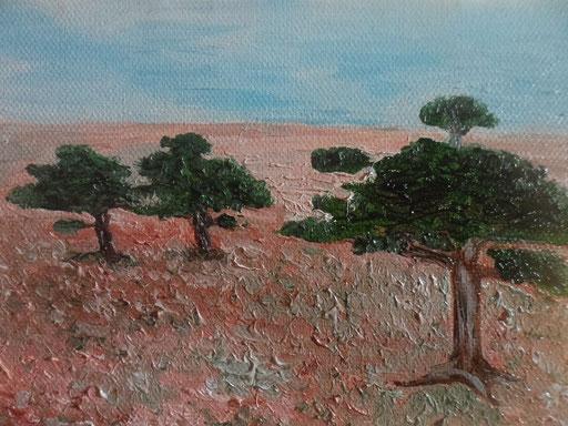 SAVANA - 2012 olio su tela 13 x 18