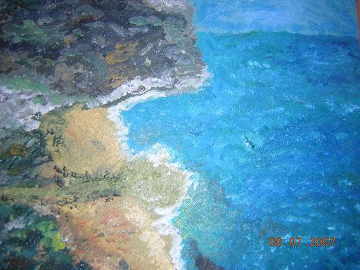SPIAGGE SOLITARIE - 2007 olio su legno 35 x 45