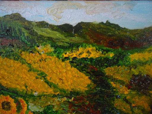LE COLLINE DEI GIRASOLI 2011 olio su tela 13 x 18