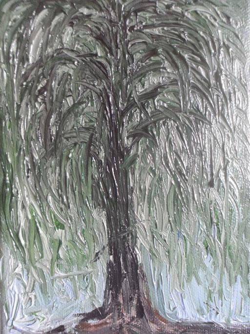 IL SALICE PIANGENTE - 2011 olio su tela 13 x 18
