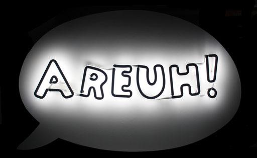 Areuh !, 2015, 87x57x10 cm, tube dia. 12mm, blanc 6500/argon, monté sur bois peint.