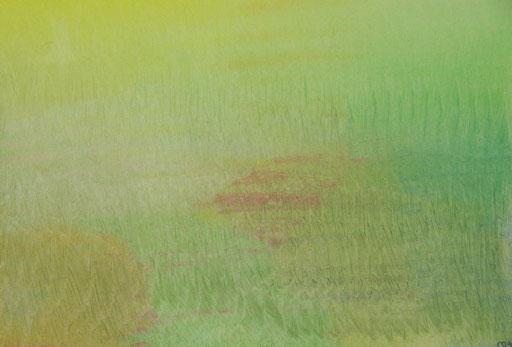 9046  27 cm x 19 cm Ölkreide auf Papier