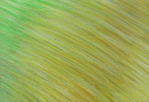 9053  27 cm x 19 cm Ölkreide auf Papier